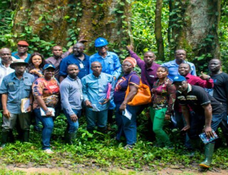 Newsletter from the Africa Palm Oil Initiative's Edo State, Nigeria, platform