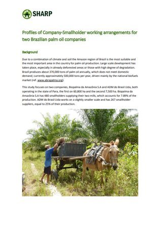 Profiles of Palm Oil Company-Smallholder Working Arrangements