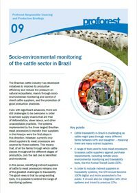 Socio-environmental monitoring of the cattle sector in Brazil