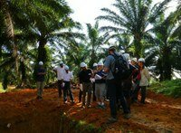 New RSPO lead auditors training course in September