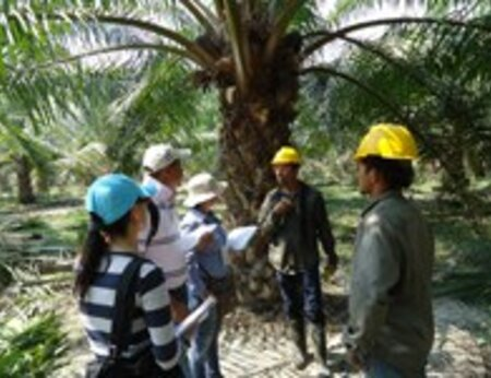 RSPO-endorsed training course to take place in Ecuador