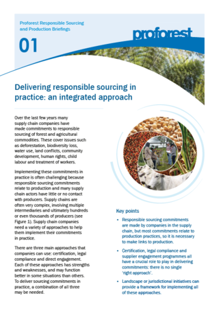 Delivering responsible sourcing in practice: an integrated approach
