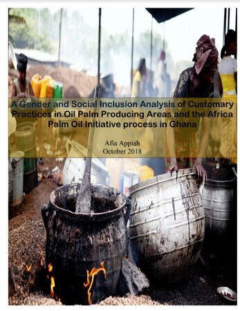 Gender and Social Inclusion Analysis of Customary Practices in Oil Palm Producing Areas and the Africa  Palm Oil Initiative process in Ghana